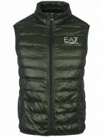 Forest Green Down Filled Slim Fit Gilet