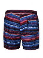 Multi-Colour Swim Shorts