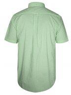 Pool Green Check Regular Short-Sleeve Shirt