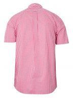 Rapture Rose Check Regular Short-Sleeve Shirt