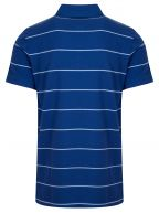 College Blue Striped Polo Shirt