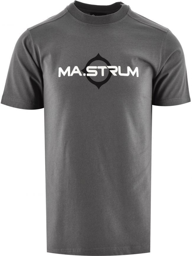Grey Short Sleeve Logo Print T-Shirt